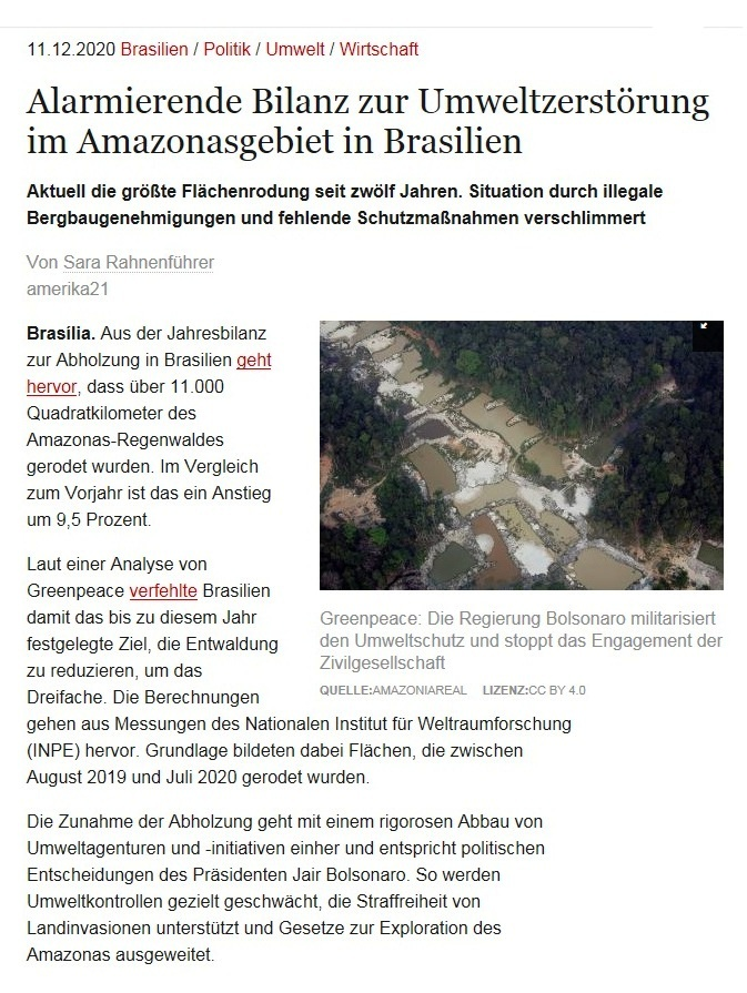 Alarmierende Bilanz zur Umweltzerstörung im Amazonasgebiet in Brasilien - Aktuell die größte Flächenrodung seit zwölf Jahren. Situation durch illegale Bergbaugenehmigungen und fehlende Schutzmaßnahmen verschlimmert - Von Sara Rahnenführer - amerika21 - Nachrichten und Analysen aus Lateinamerika - 11.12.2020