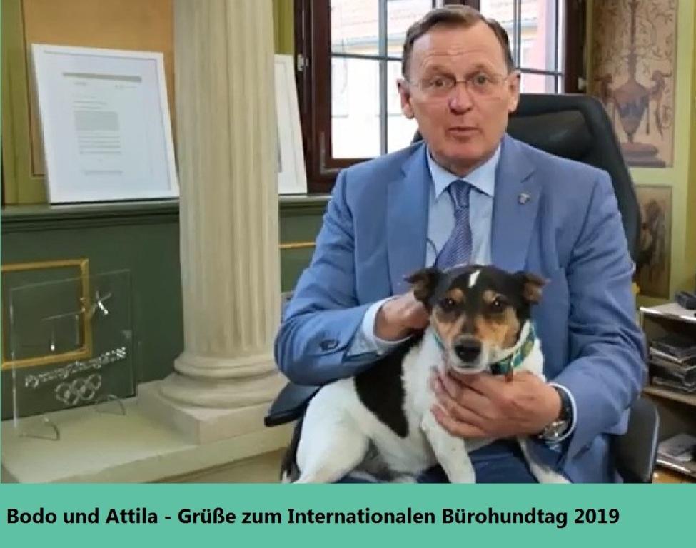 Attila in der Thüringer Staatskanzlei - Bodo und Attila - Grüße zum Internationalen Bürohundtag 2019 - Internationaler Bürohundtag 2019 in der Kanzlei des Thüringer Ministerpräsidenten Bodo Ramelow in Erfurt