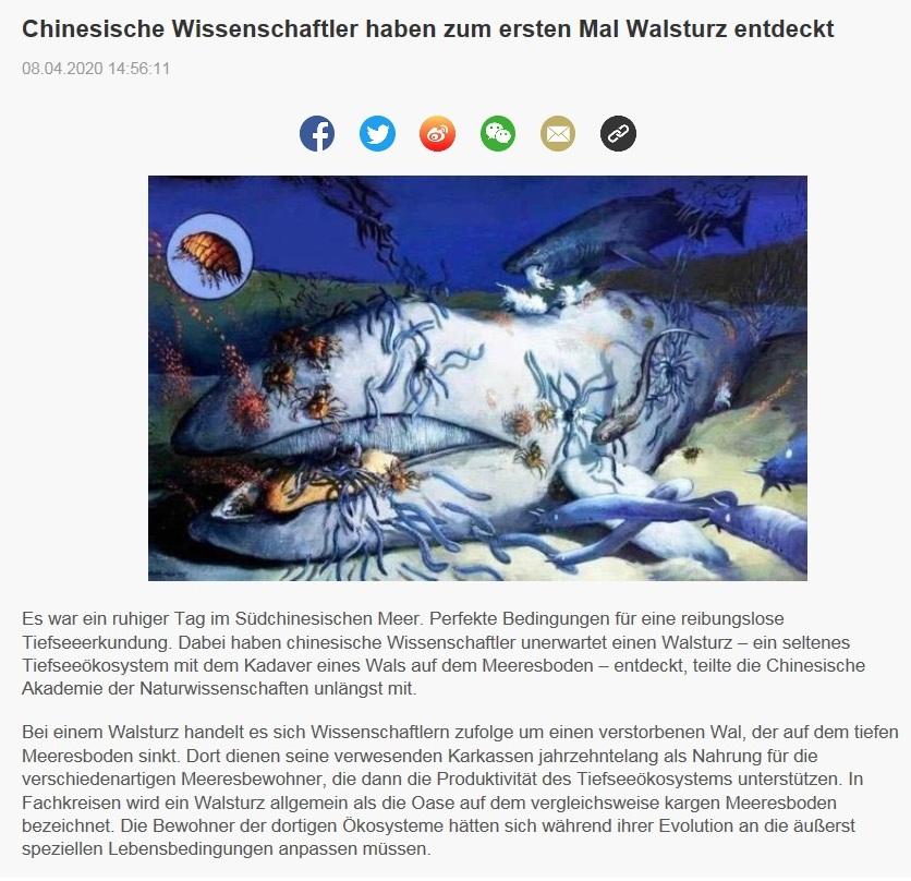 Chinesische Wissenschaftler haben zum ersten Mal Walsturz entdeckt - CRI online Deutsch - 8.04.2020