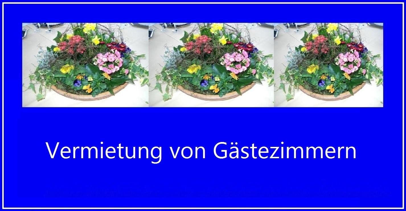 D E K Handel & Dienstleistungen - Gastronomieservice Eckart Kreitlow - Übernahme von Gastronomiedienstleistungen inklusice Koch-Dienstleistungen und Gästebetreuungen.
