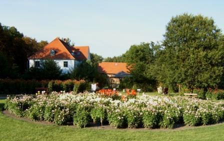 Seit 1981 findet in Bad Sülze alljährlich Anfang September ein wunderschönes Dahlienfest statt!