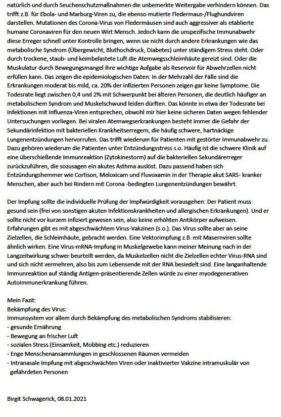 Aus dem Posteingang - Datenlage Corona-Virus-Infektionen Stand: 08.01.2021 -  Dr. Birgit Schwagerick - Seite 3 von 3