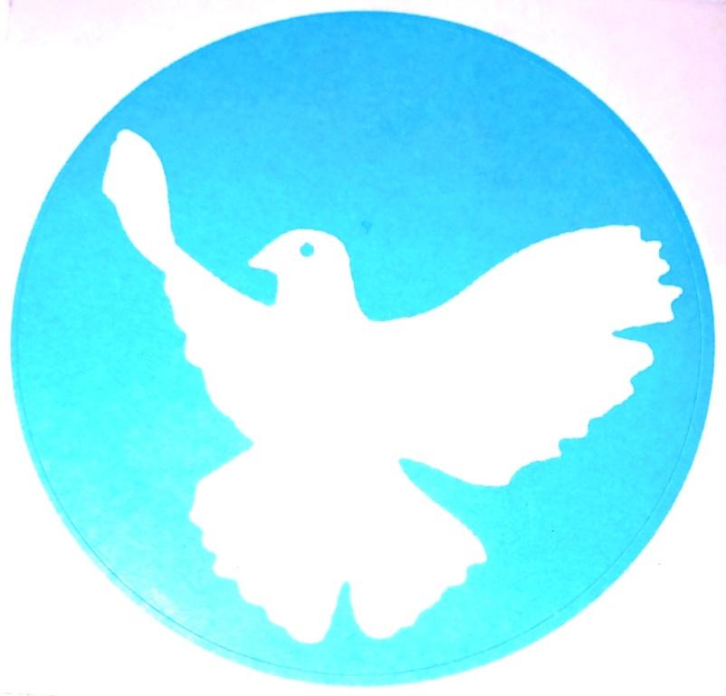 Weiße Friedenstaube auf blauem Untergrund. Foto: Eckart Kreitlow