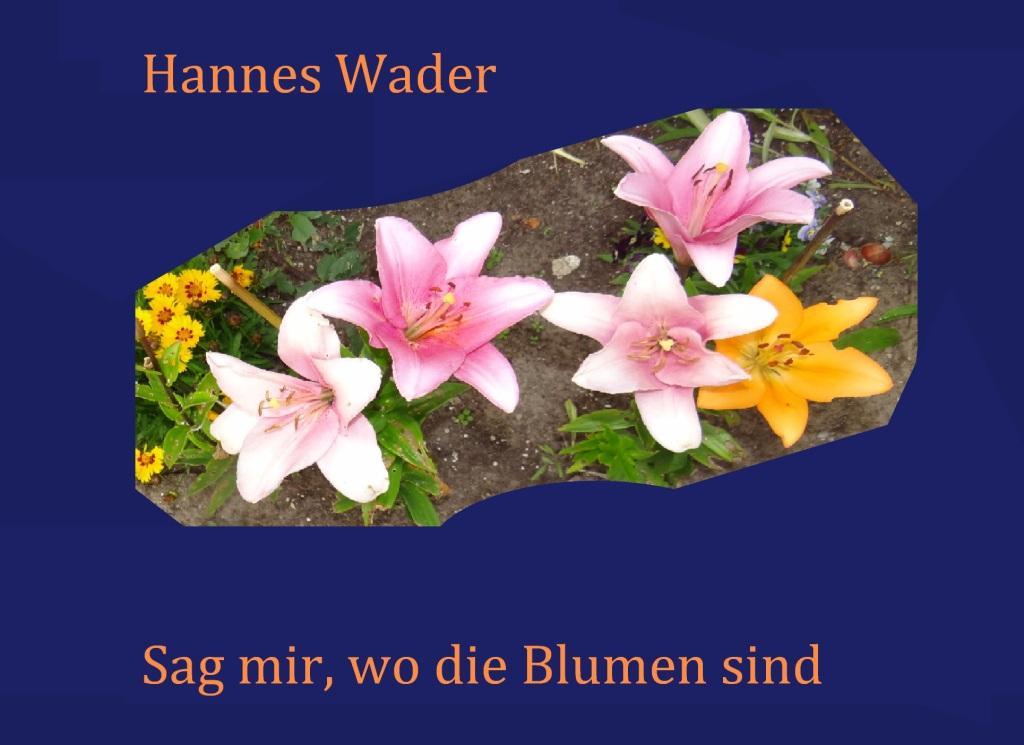 Hannes Wader - Sag mir, wo die Blumen sind