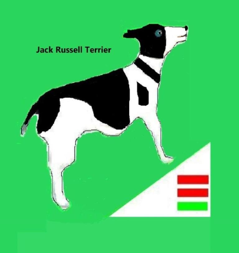 Übrigens privat soll Bodo Ramelow einen Jack Russell Terrier besitzen, der auf den Namen Attila hören soll. Bei Wikipedia wird das Wesen der Jack Russell Terrier wie folgt beschrieben: 'Der Jack Russell Terrier ist in erster Linie ein Arbeitsterrier, ein Jagdhund. Er ist ein lebhafter, wachsamer, aktiver Terrier mit durchdringendem, intelligentem Ausdruck, kühn und furchtlos, freundlich mit ruhigem Selbstvertrauen.'