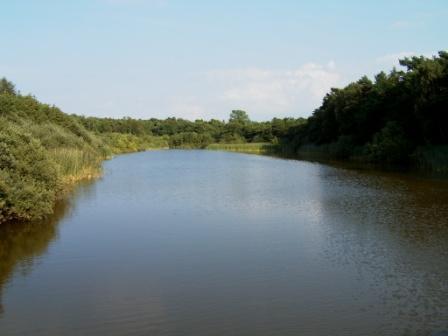 Die wunderschöne Naturlandschaft Prerower Strom auf dem Darß als Teil des Nationalparks Vorpommersche Boddenlandschaft im Nordosten Deutschlands. Foto: Eckart Kreitlow