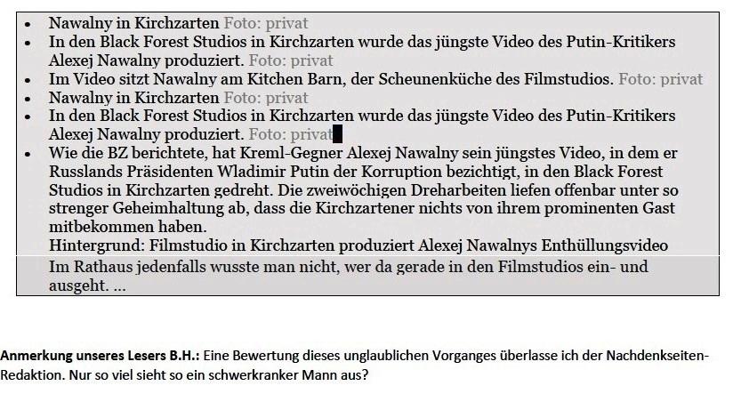 Palast-Video in Blackforest-Studios produziert - NachDenkSeiten - Die kritische Website - 25. Januar 2021 um 11:39 - Aus dem Posteingang von Siegfried Dienel vom 25.01.2021 - Abschnitt 4 von 5 Abschnitten