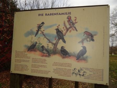 Schautafeln über die heimische Vogelwelt im Schlemminer Schlosspark in Mecklenburg-Vorpommern. Foto: Eckart Kreitlow
