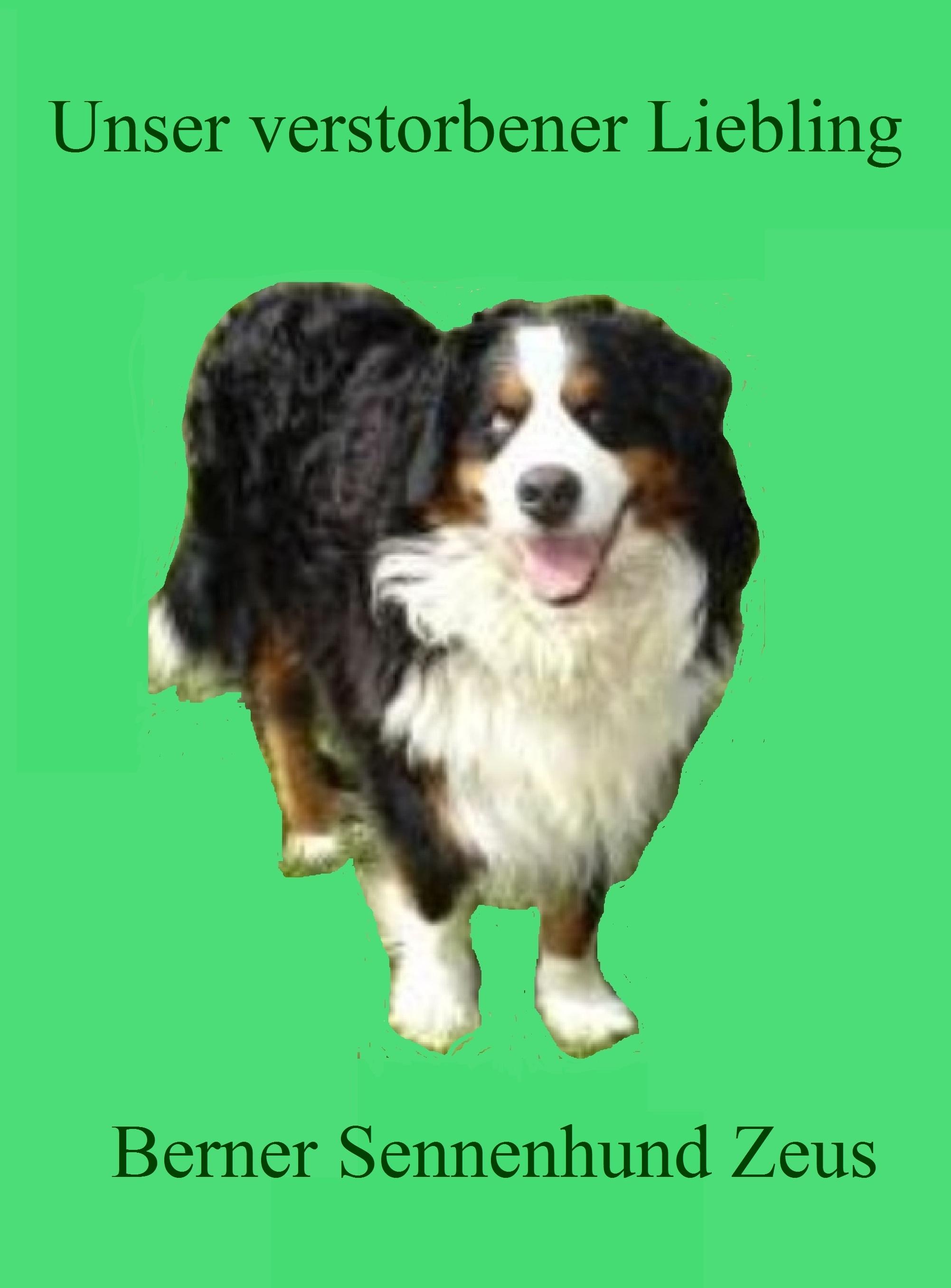 Unser verstorbener Liebling Berner Sennenhund Zeus. Foto: Eckart Kreitlow