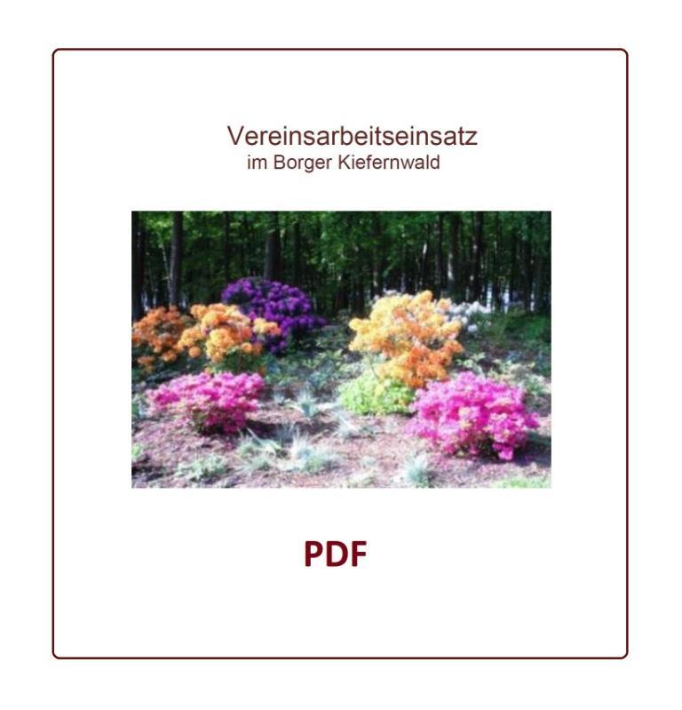 Vereinsarbeitseinsatz im Borger Kiefernwald - PDF