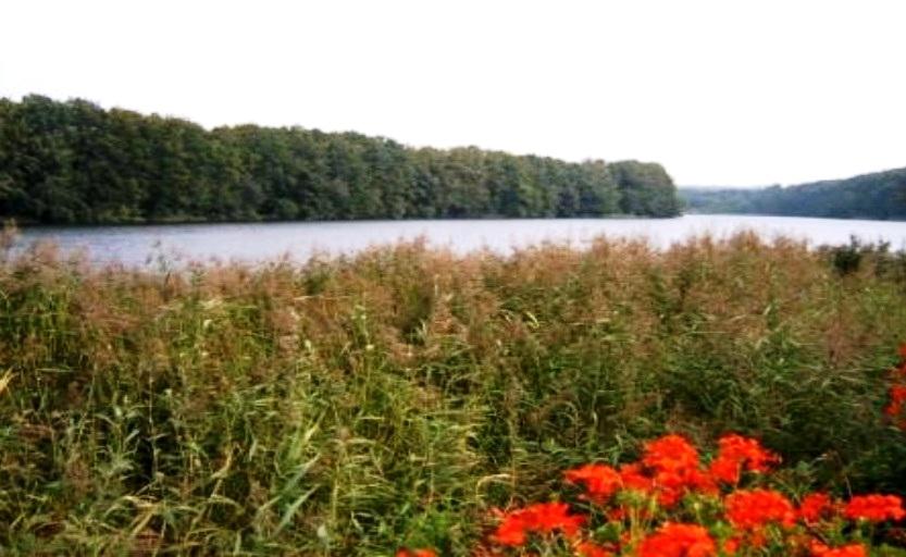 Der Ploggensee in Grevesmühlen - Teil einer wunderschönen Naturlandschaft in Deutschlands nordöstlichem Bundesland Mecklenburg-Vorpommern. Foto: Eckart Kreitlow