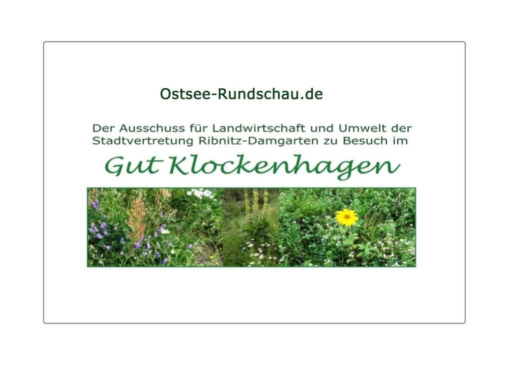 Mitglieder des Landwirtschafts- und Umweltausschusses der Stadtvertretung der Bernsteinstadt Ribnitz-Damgarten am 20. August 2020 zu Besuch im Bio-Gut und Mutterkuhbetrieb Klockenhagen