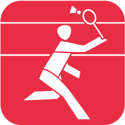 Ribnitzer Sportverein 1919 e. V. - Badminton